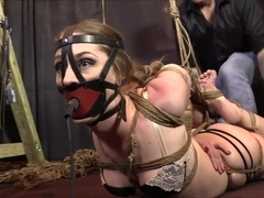 hogtied and inflatable pump gagged
