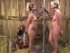 BDSM3 - hucows dolly and penny lee.high speed cow milker - E