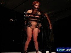 ### gets pussy clamped while restrained