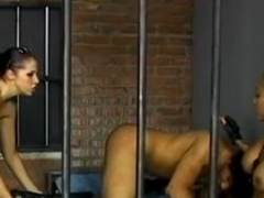 Breasty darksome brown police makes prisoner suck a huge strap on
