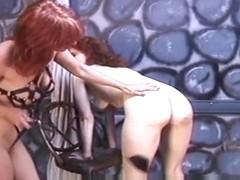 Porn pics of rufa mae