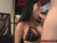 Gaia swallows on webcam