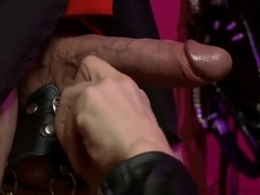 Sexy Mistress Type Teases Guy